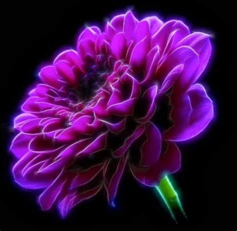 750x1334 beautiful 3d flower cg purple flower 3d and cg abstract background wallpapers