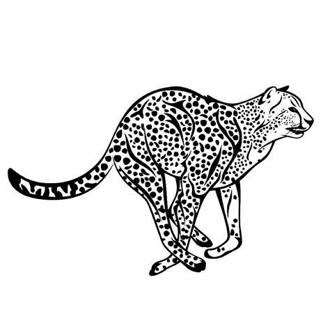 Cheetah Kleurplaat leuk voor cheetah