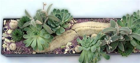 Racy Indoor Gardening Ideas Lie Down In Warm House