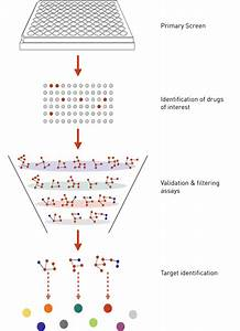 Chemical Genetics  U0026 Drug Target Discovery