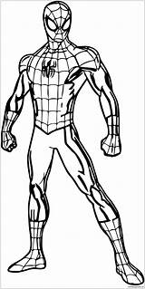 Spider Pages Pose Coloring Spiderman Superhero Colouring Poses Drawing Halloween Body Printable Print Avengers Boys Shopkins Marvel Hulk Pokemon Wecoloringpage sketch template