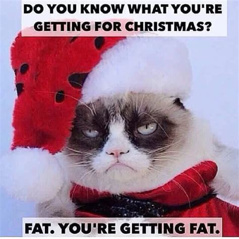 Funny Xmas Memes - 7 funny christmas memes to make your holidays hilarious