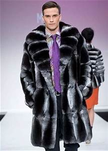 Chinchillas, Chinchilla fur coat and Fur on Pinterest