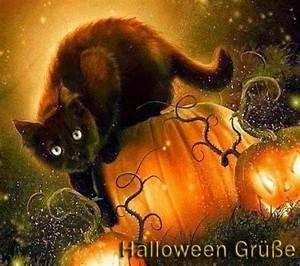 Lustige Halloween Sprüche : lustigebilder lustige kostenlose bilder ~ Frokenaadalensverden.com Haus und Dekorationen