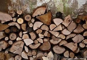 Wie Lange Muss Holz Trocknen : brennholz lagern so machen sie richtig feuer garten ~ Watch28wear.com Haus und Dekorationen