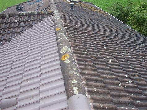 demoussage toiture  demoussage toit lyon peinture