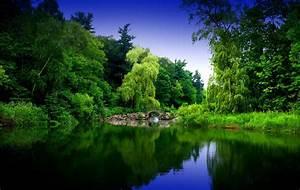 Zen Garden Wallpapers