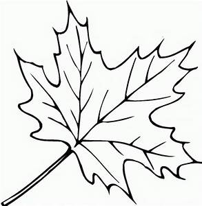 simple leaf colouring pages - Google Search | simple ...