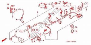 Wire Harness  Cbf1505  M5  6  M6  For Honda Cb 150 Unicorn