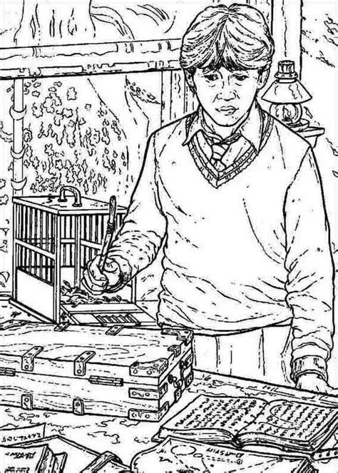 konabeun zum ausdrucken ausmalbilder harry potter