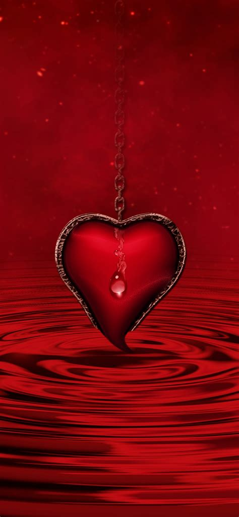 red heart wallpaper  water red background stars