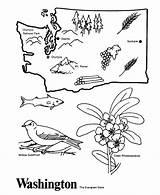 Coloring State Washington Outline Map Printable History Tree California Jojo Siwa Wa Utah Printables sketch template