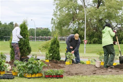 what is landscaping work how to landscape on a budget with a landscape contractor home improvement
