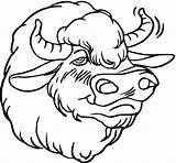 Coloring Pages Buffalo Bison Head Herd Face Drawing Template Smiling Animal Animals American Wildlife Getcoloringpages Bisons Realistic Clipartmag sketch template