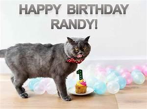 Randy, Cat, Birthday, Meme