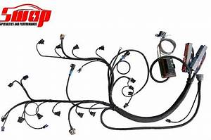 Ls Standalone Wiring Harness By Swap Dbw  Dyno Run