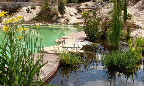 creer un bassin exterieur comment faire pour am 233 nager un bassin naturel