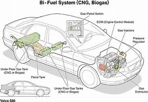 Boyle U0026 39 S Law In The Environment
