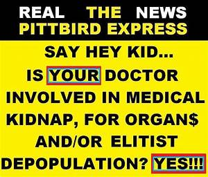 The Culling Of Americans    U0026quot The Great Deception U0026quot    Pittbird Express From The City Of Chumpions
