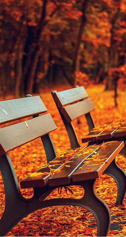 Iphone Autumn Wallpapers Awesome Fall Nature Leaves