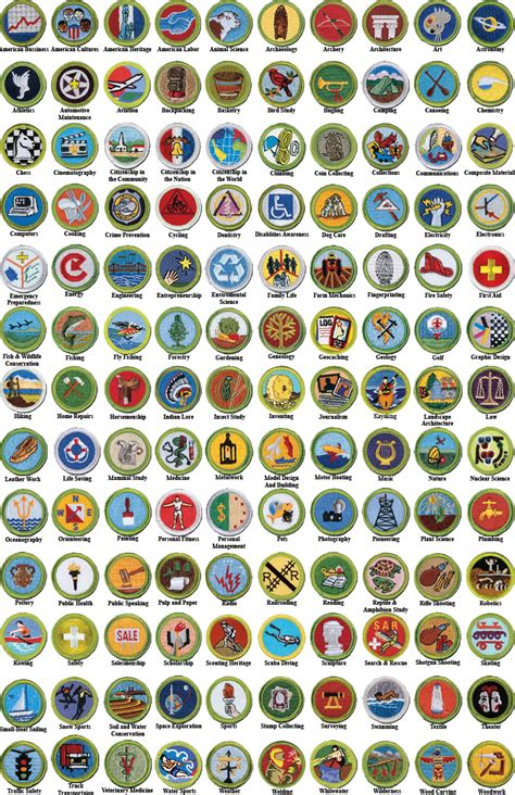 Boy Scout Merit Badges The best worksheets image ...