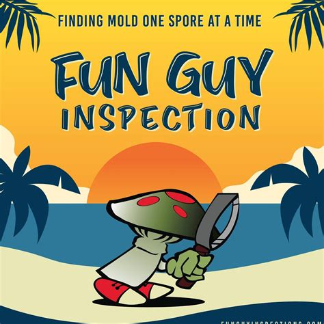 fun guy inspection consulting llc home facebook