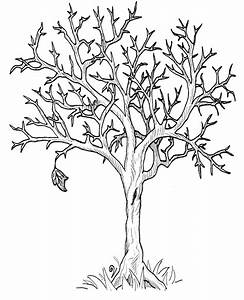Autumn Fall Tree Without Leaves Coloring Page | DOVER ...