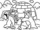 Igloo Coloring Lesson Printable Penguins Getcolorings sketch template