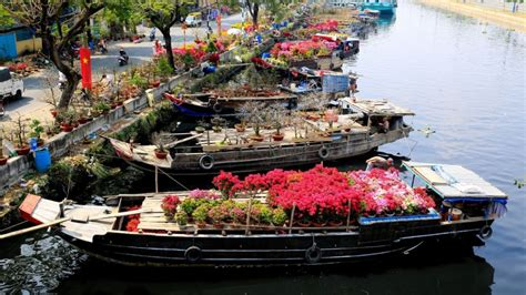 Tet Flower Markets In Saigon Scooter Saigon Tour