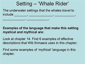 whale rider essay     to do my homework for me