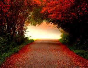 Free Autumn Screensavers Downloads