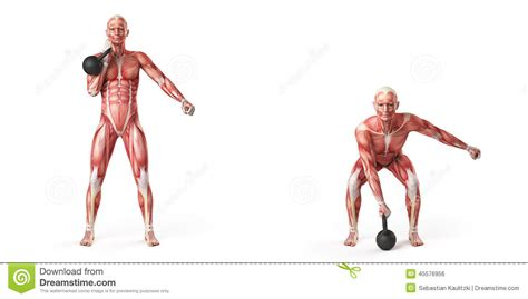 kettlebell clean arm illustration exercise kettle person bell dreamstime illustrations muscles press vector swing bones workouts using single royalty fitness