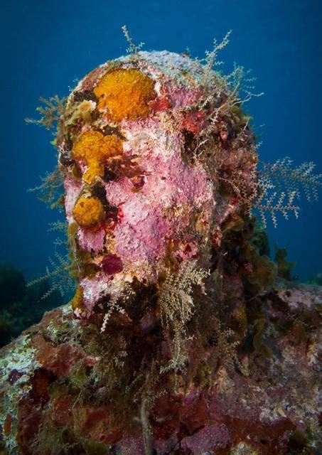 corals underwater sculpture by jason decaires taylor