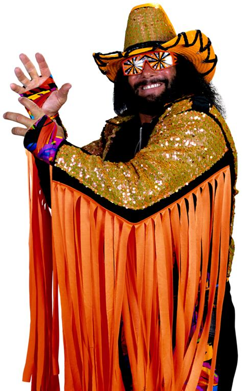 macho man randy savage universe  smash bros lawl wiki