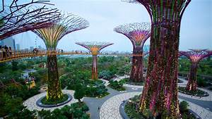 Modern Architecture Pictures: View Images of Gardens by ...