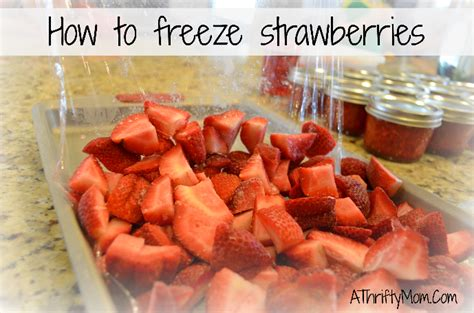 how to freeze strawberries how to freeze strawberries 5 easy steps strawberries