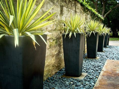 Outdoor Pots And Planters by Potted Plant Home Landscape Contemporary With