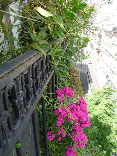 Plantes Fleuries Exterieur Plein Soleil Fleurs Balcon Plein Soleil
