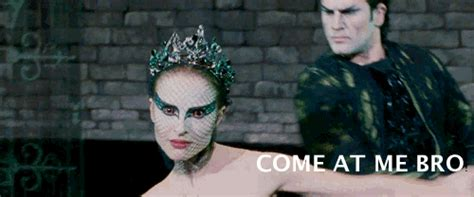 Black Swan Meme - black swan come at me bro gif find share on giphy