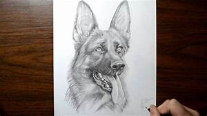 How To Draw A Dog German Shepherd Youtube