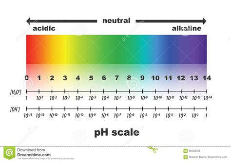 ph scale litmus paper color chart vector illustration