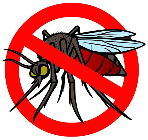 Mosquito Clip No Mosquito Clipart Www Imgkid The Image Kid Has It
