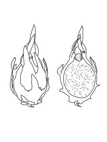 dragon fruit coloring page supercoloringcom
