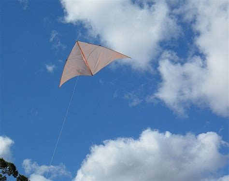 homemade kite  fun  fly   follow  tips