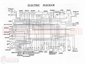 Chinese Atv Wiring Diagrams Diagram For Roketa 200