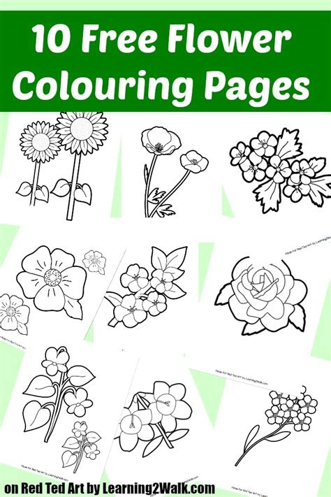 10 Free Flower Colouring Pages Red Ted Art Make