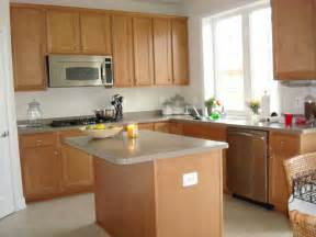 the low cost kitchen cabinet makeovers for your home my kitchen interior mykitcheninterior - Ideas For Kitchen Cabinets Makeover