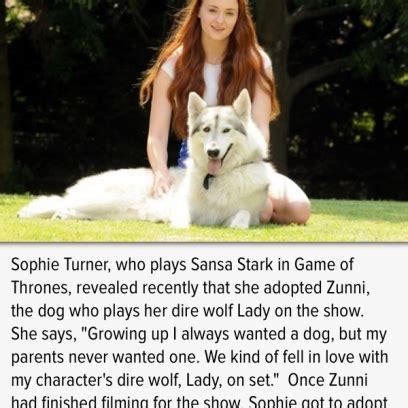 sansa stark adopts  dire wolf zunni  game  thrones