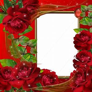 Beautiful Red Roses Transparent Photo Frame | Wallpapers ...
