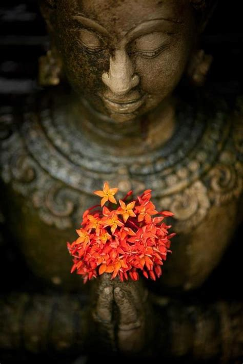 doorway yogas abundant offerings
